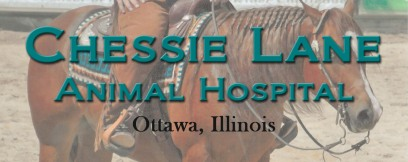 Visit Chessie Lane Animal Hospital Here!