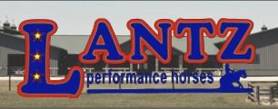 Visit Lantz Performance Horses Here!