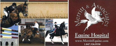 Visit Merritt and Associates Equine Hospital Here!</a