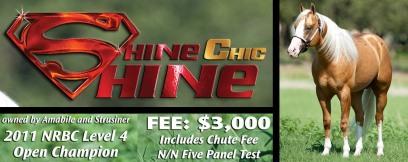 Visit Shine Chic Shine Here!