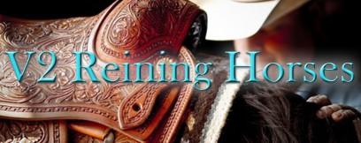 Visit V2 Reining Horses Here!